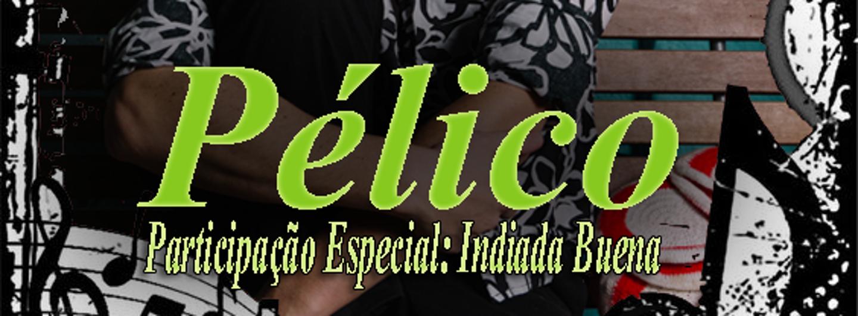 Pelico1.crop 564x208 0,533.resize 1440x532