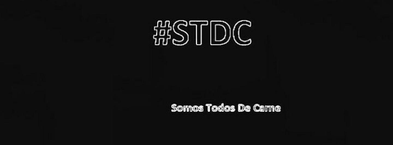 Stdc.crop 720x266 0,199.resize 1440x532