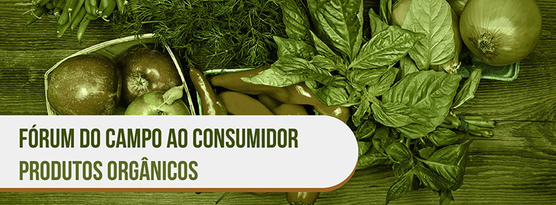 Produtosorgnicos01.crop 900x333 0%2c37.resize 1440x532