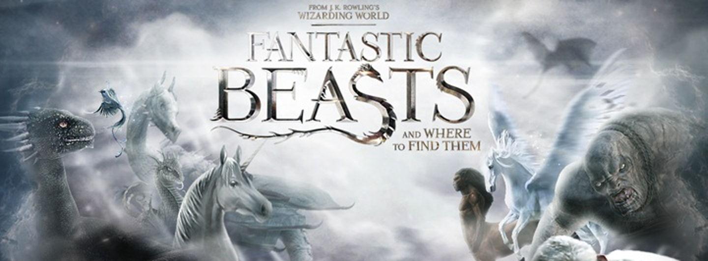 fantastic beasts  by jhonatas de almeidad9v8eni.crop 720x266 0,0.resize 1440x532