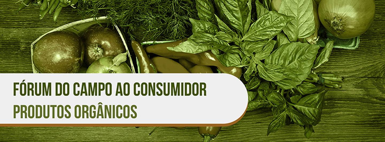 Produtosorgnicos01.crop 900x332 0%2c53.resize 1440x532