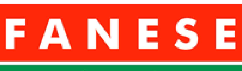 Logo fanese.crop 202x60 16,0.resize 1170x
