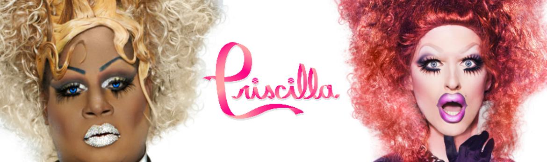 Priscilla.crop 851x254 0,37.resize 1170x