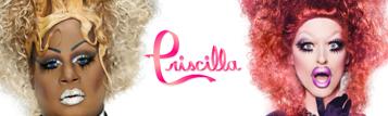 Priscilla.crop 851x254 0,37.scale crop 357x107